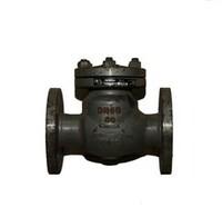 Клапан обр. 19лс53нж хл1 ру40 ду80 исп.2